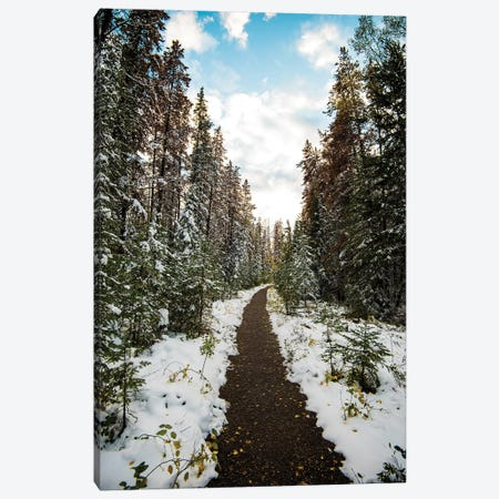 Winter Path Canvas Print #LCS106} by Lucas Moore Canvas Print