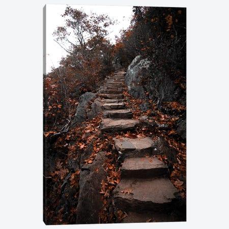 Autumn Path Canvas Print #LCS11} by Lucas Moore Canvas Art