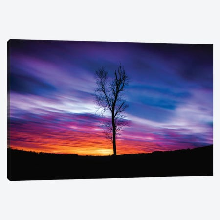 Lonely Sunset Canvas Print #LCS120} by Lucas Moore Canvas Artwork