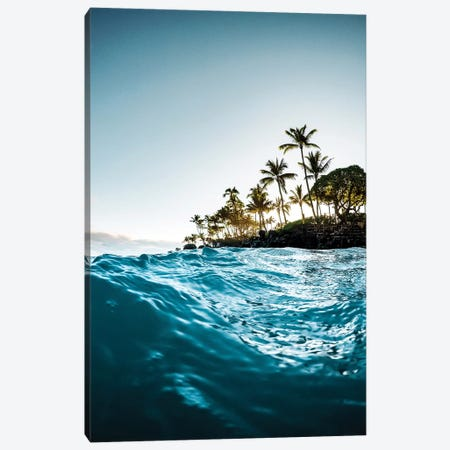 Blue Morning Canvas Print #LCS17} by Lucas Moore Canvas Print
