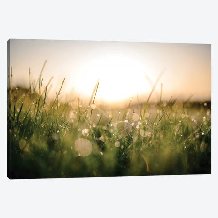 Damp Morning Canvas Print #LCS28} by Lucas Moore Canvas Art Print