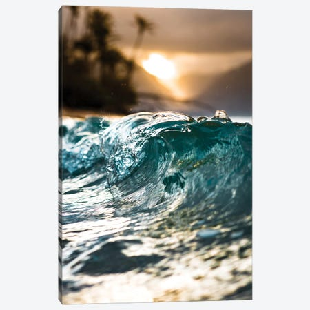 Glassy Wave Canvas Print #LCS36} by Lucas Moore Canvas Print
