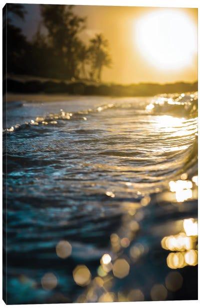 Glistening Waters Canvas Art Print