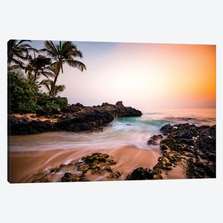 Hawaiian Paradise Canvas Print #LCS42} by Lucas Moore Canvas Print