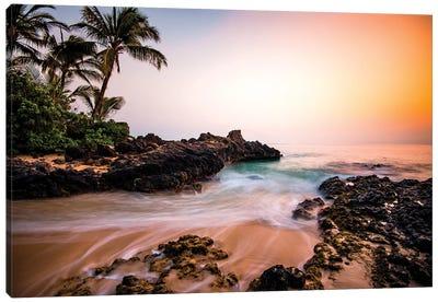Hawaiian Paradise Canvas Art Print