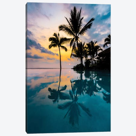 Palm Tree Reflection Canvas Print #LCS69} by Lucas Moore Art Print