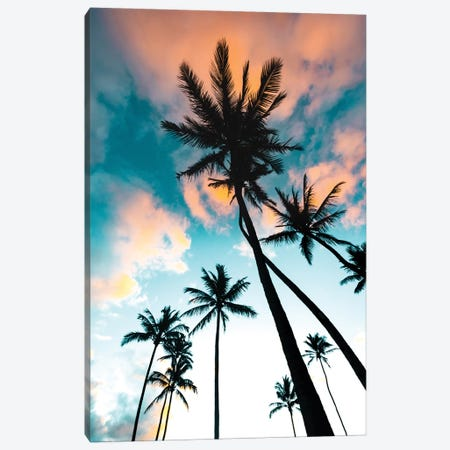 Palm Tree Sunrise Canvas Print #LCS70} by Lucas Moore Canvas Art