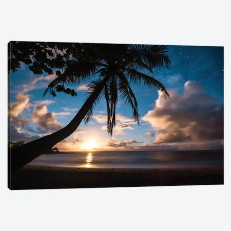 Paradise At Night Canvas Print #LCS71} by Lucas Moore Canvas Art
