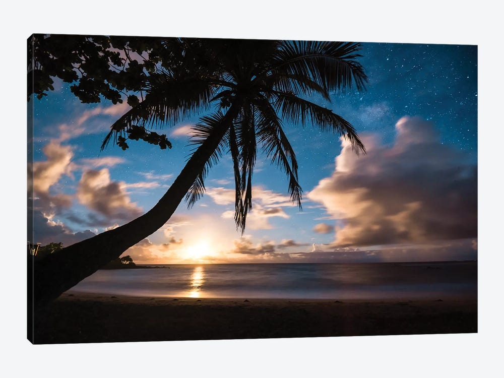 Paradise At Night by Lucas Moore 1-piece Canvas Print