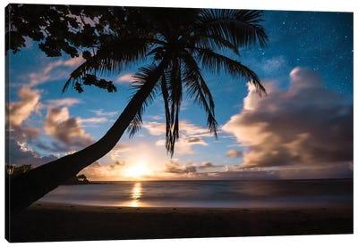 Paradise At Night Canvas Art Print