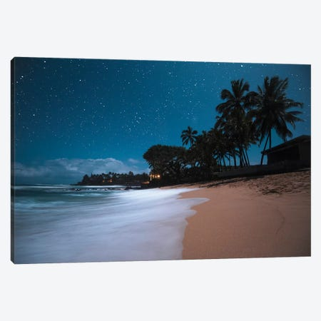 Tropical Night Canvas Print #LCS98} by Lucas Moore Canvas Art