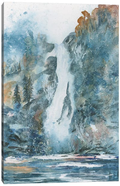 Back Country Waterfall Canvas Art Print