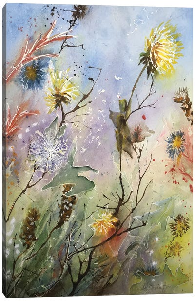 Dandelions And Thistles Also Canvas Art Print