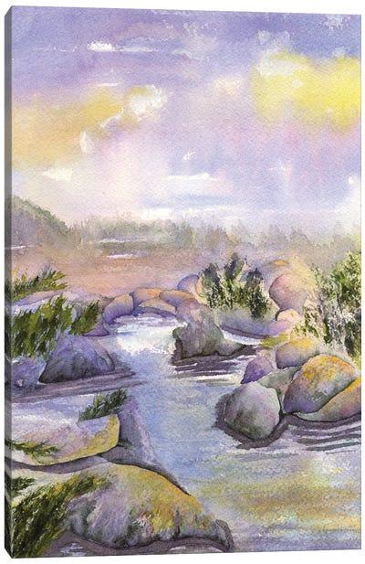 Desert Brook Canvas Art Print