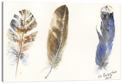 Feathers Canvas Art Print