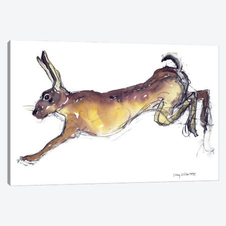 Jumping Hare Canvas Print #LCW8} by Lucy Willis Canvas Wall Art