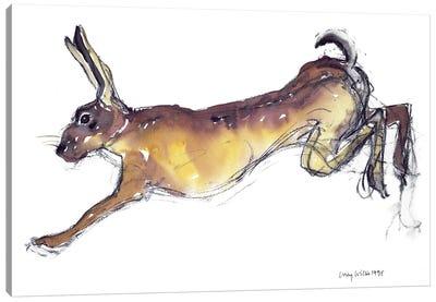 Jumping Hare Canvas Art Print