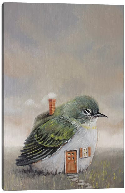 Bird House Canvas Art Print