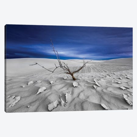 Alone Canvas Print #LDE10} by Larry Deng Canvas Art Print