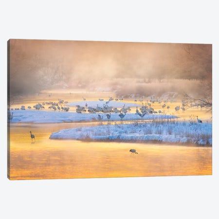 Golden Morning Canvas Print #LDE13} by Larry Deng Canvas Print