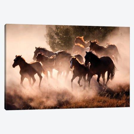 Horses Canvas Print #LDG11} by Lisa Dearing Art Print