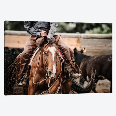 Cutting Horse I Canvas Print #LDG2} by Lisa Dearing Canvas Artwork