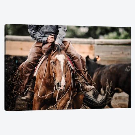 Cutting Horse I Canvas Print #LDG2} by Lisa Dearing Canvas Artwork