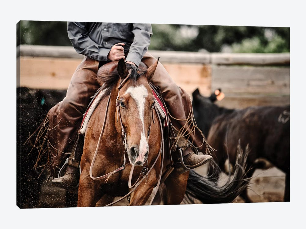 Cutting Horse I by Lisa Dearing 1-piece Canvas Art