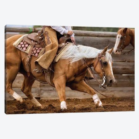 Cutting Horse II Canvas Print #LDG3} by Lisa Dearing Canvas Artwork