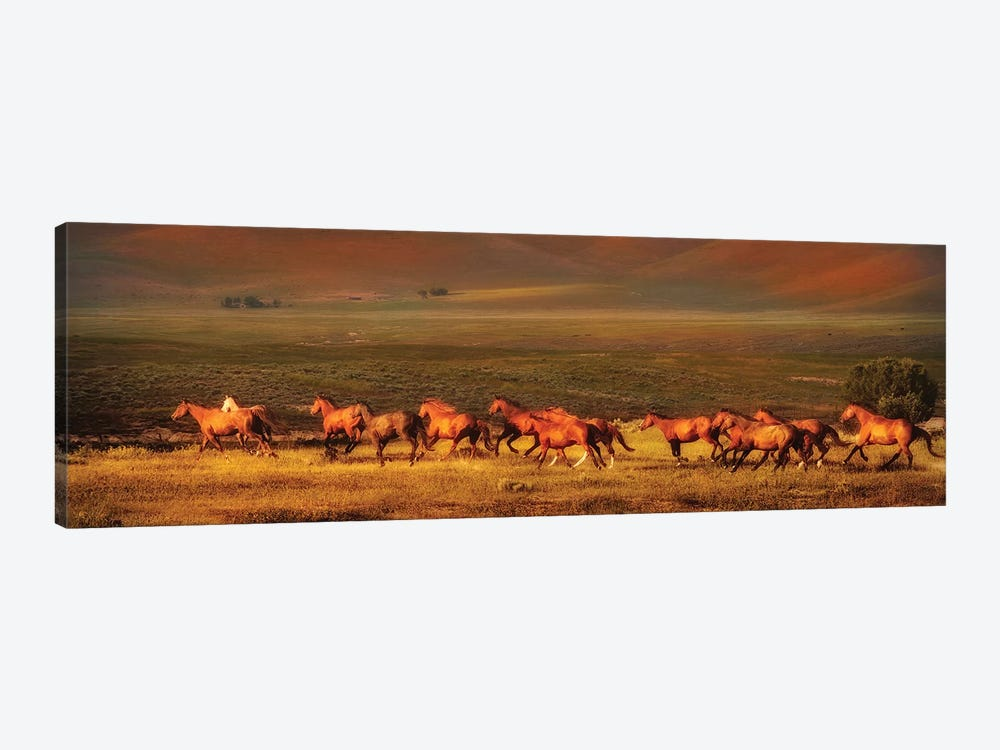 Montana Dreaming by Lisa Dearing 1-piece Canvas Wall Art