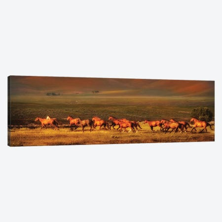 Montana Dreaming 3-Piece Canvas #LDG4} by Lisa Dearing Canvas Print