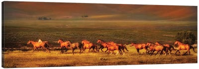 Montana Dreaming Canvas Art Print