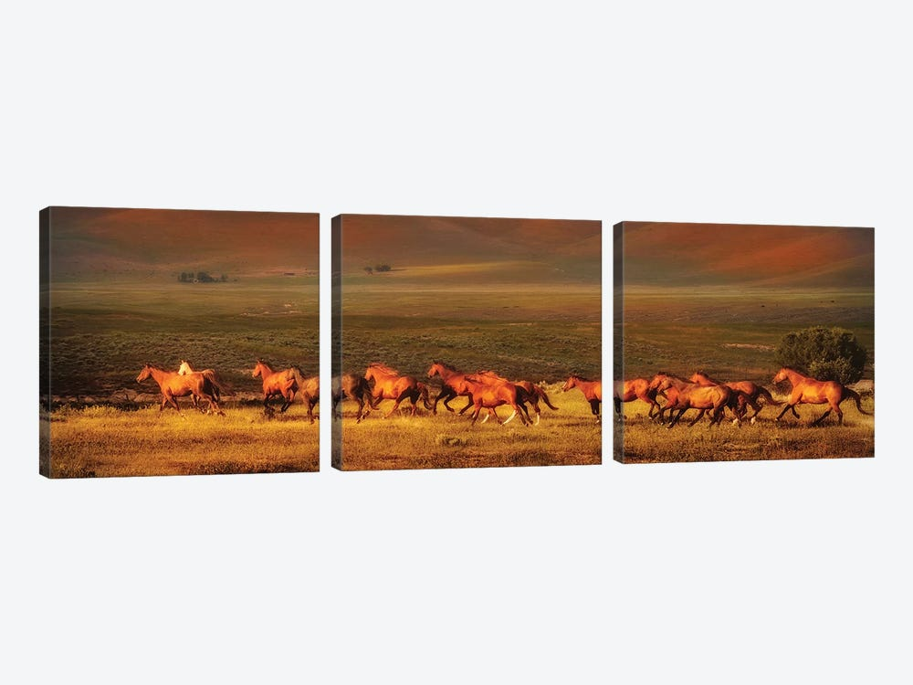 Montana Dreaming by Lisa Dearing 3-piece Canvas Artwork