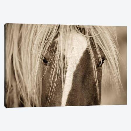 The Blonde Canvas Print #LDG5} by Lisa Dearing Canvas Art Print