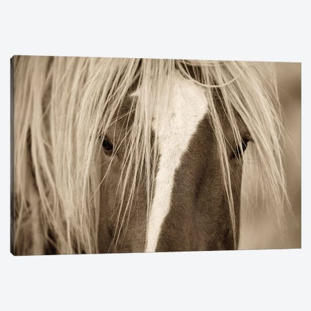 The Blonde Canvas Print #LDG5} by Lisa Dearing Canvas Art Print