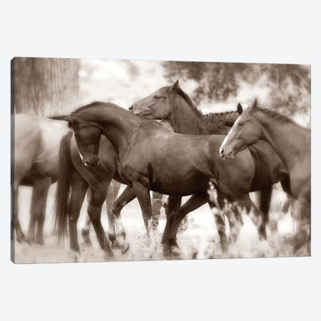 The Herd Canvas Print #LDG6} by Lisa Dearing Canvas Art Print