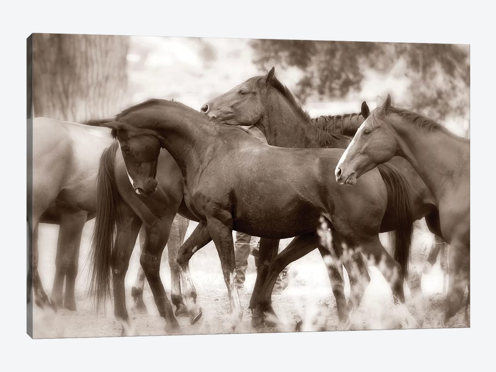 The Herd by Lisa Dearing 1-piece Canvas Artwork