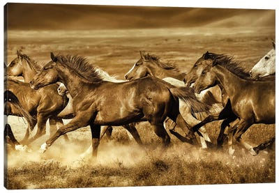 Unbroken Canvas Art Print