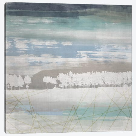From the Earth I Canvas Print #LDH11} by Louis Duncan-He Canvas Wall Art