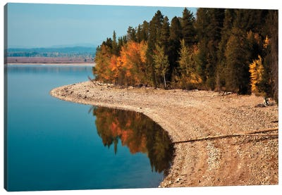 Autumn Shoreline Landscape, Jackson Lake, Grand Teton National Park, Wyoming, USA Canvas Art Print