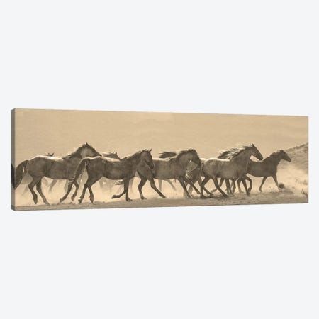 Horse Parade 3-Piece Canvas #LDN10} by Sally Linden Canvas Art