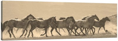 Horse Parade Canvas Art Print
