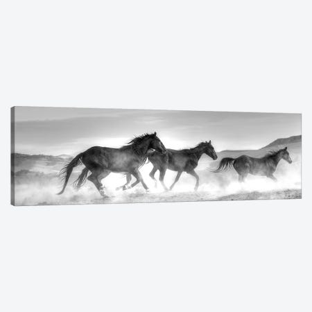 Rolling By Canvas Print #LDN22} by Sally Linden Art Print