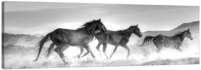Rolling By Canvas Art Print