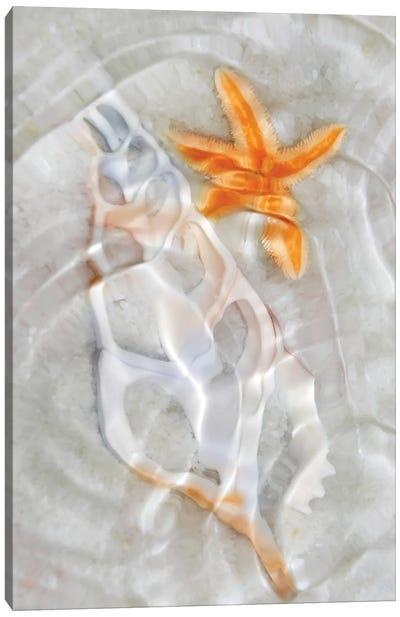 Underwater Light Waves VII Canvas Art Print