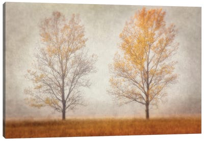 Misty Duo Canvas Art Print