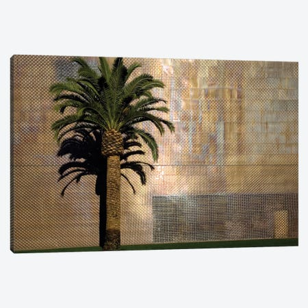 Lone Palm Tree, M.H. de Young Memorial Museum, Golden Gate Park, San Francisco, California, USA Canvas Print #LDS2} by Jim Goldstein Canvas Art Print
