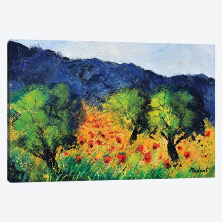 Olive trees and red poppies Canvas Print #LDT106} by Pol Ledent Canvas Artwork
