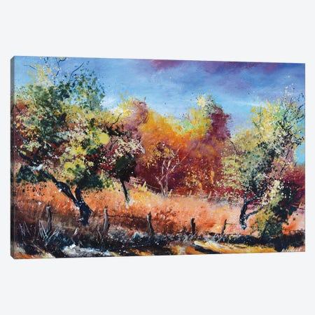 Autumn in orchard Canvas Print #LDT107} by Pol Ledent Canvas Art
