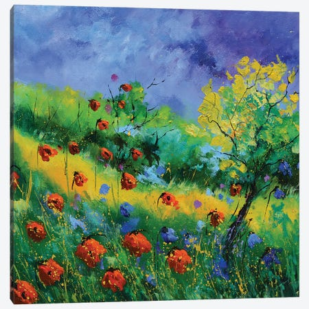 Summer 2020 Canvas Print #LDT113} by Pol Ledent Canvas Wall Art